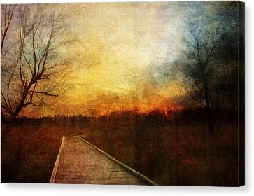 Night Falls Canvas Print by Scott Norris