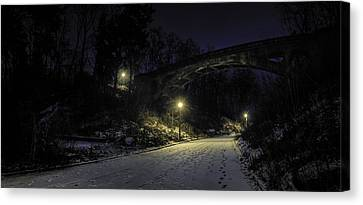 Night Hushed The Shadowy Earth Canvas Print by Scott Norris