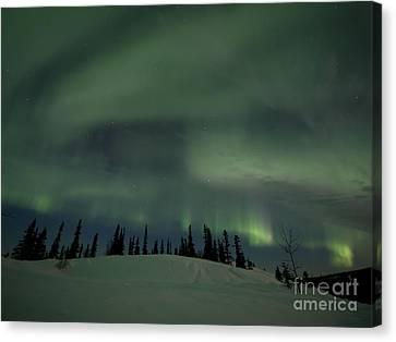 Night Lights Canvas Print by Priska Wettstein