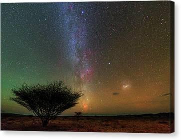 Night Sky Over A Savanna Canvas Print by Babak Tafreshi