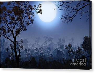Night Watcher Canvas Print by Bedros Awak