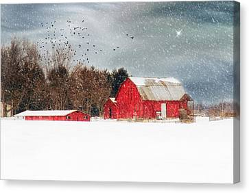 Night's Snow Dust Canvas Print by Mary Timman