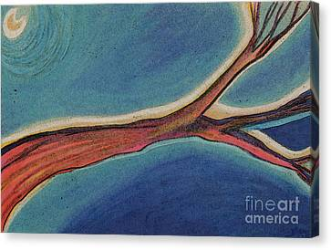 Nighttime Branch 1 Canvas Print by First Star Art