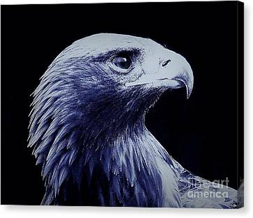 Nightwatcher Canvas Print by Andy Heavens