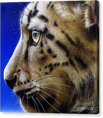 Nina The Snow Leopard Canvas Print by Jurek Zamoyski