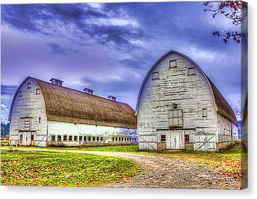 Nisqually Twin Barns Canvas Print by Barry Jones