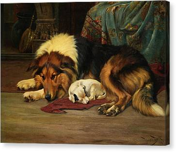 No Walk Today Canvas Print by Wright Barker