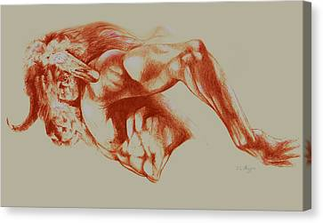 North American Minotaur Red Sketch Canvas Print by Derrick Higgins