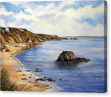 North Beach  Tenby Canvas Print by Andrew Read