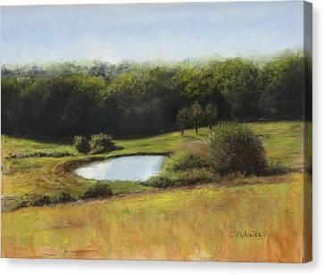 North St. Upton Ma Canvas Print by Cindy Plutnicki