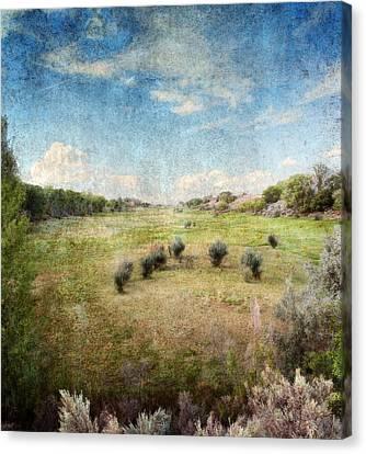 North Valley Canvas Print by Brett Pfister