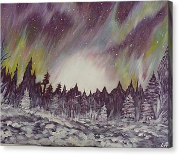 Northern Lights  Canvas Print by Irina Astley