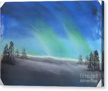 Northern Lights Canvas Print by Tracey Williams