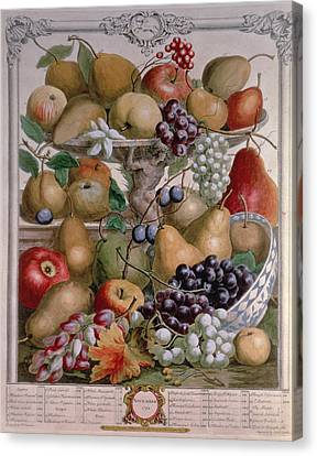 November, From Twelve Months Of Fruits, By Robert Furber C.1674-1756 Engraved By James Smith, 1732 Canvas Print by Pieter Casteels