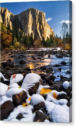 November Morning Canvas Print by Anthony Bonafede