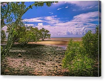Nudgee Beach Queensland  Australia Canvas Print by Donah Beckhouse