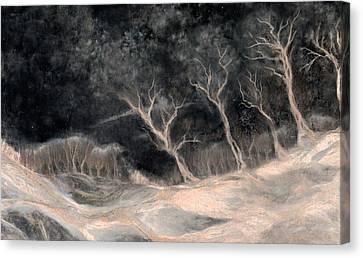 O2 Canvas Print by Hans Neuhart