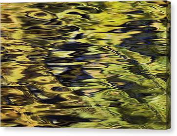 Oak And Maple Trees Reflections In Canvas Print by Thomas Kitchin & Victoria Hurst