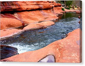 Oak Creek At Slide Rock Canvas Print by Carol Groenen