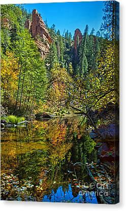 Oak Creek Beauty Canvas Print by Brian Lambert