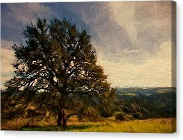 Oak Lookout Canvas Print by John K Woodruff