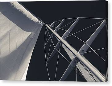 Obsession Sails 6 Black And White Canvas Print by Scott Campbell