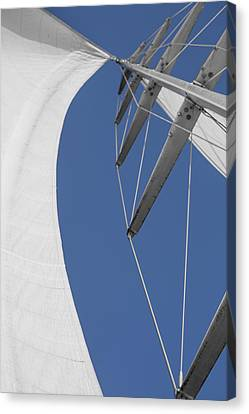 Obsession Sails 9 Canvas Print by Scott Campbell