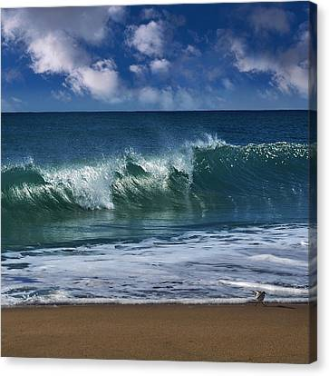 Ocean Blue Morning 2 Canvas Print by Laura Fasulo