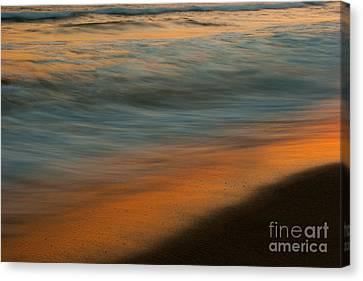 Ocean Impressions  Canvas Print by John F Tsumas