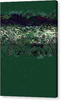 Ocean Series 40 Canvas Print by Franco Timitilli