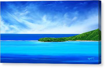Ocean Tropical Island Canvas Print by Anthony Fishburne