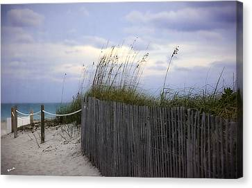 Ocean View 2 - Miami Beach - Florida Canvas Print by Madeline Ellis