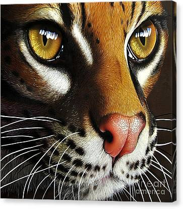 Ocelot Canvas Print by Jurek Zamoyski