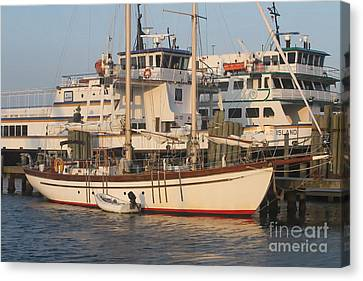 Ocracoke Boats 2 Canvas Print by Cathy Lindsey