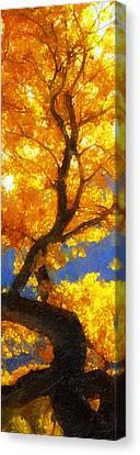 October Colors Canvas Print by Ron Regalado