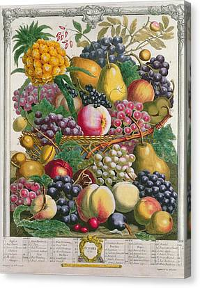 October, From Twelve Months Of Fruits, By Robert Furber C.1674-1756 Engraved By Henry Fletcher Canvas Print by Pieter Casteels