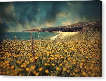Ode To Melancholy Canvas Print by Taylan Soyturk