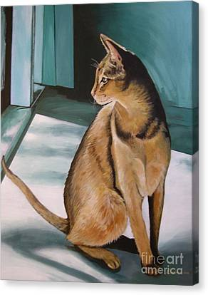 Oh Beautiful House Cat Canvas Print by J Linder