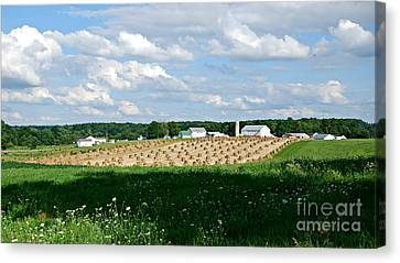Ohio Amish Farm Canvas Print by Lila Fisher-Wenzel