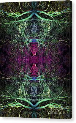 Ohtar Canvas Print by Tim Gainey