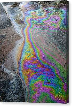 Oil Slick On Water Canvas Print by Panoramic Images