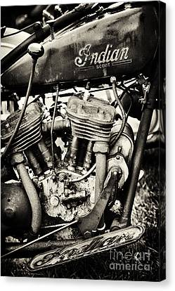 Oily Old Indian Canvas Print by Tim Gainey