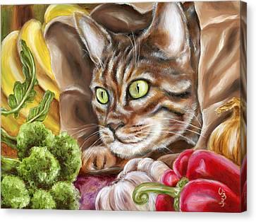 Ok Now What Canvas Print by Hiroko Sakai