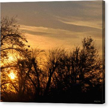 Oklahoma Sunset Canvas Print by Jeff Kolker