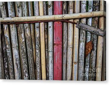 Old Bamboo Fence Canvas Print by Niphon Chanthana