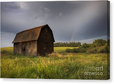 Old Barn After The Rain Canvas Print by Dan Jurak