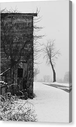 Old Door And Tree Canvas Print by William Jobes