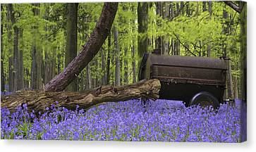 Old Farm Machinery In Vibrant Bluebell  Spring Forest Landscape Canvas Print by Matthew Gibson