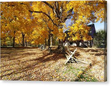 Old Farmroad With Autumn Colors Canvas Print by George Oze