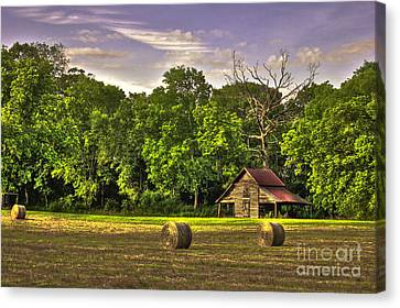 Old Friends The Barn And Oak Tree Canvas Print by Reid Callaway